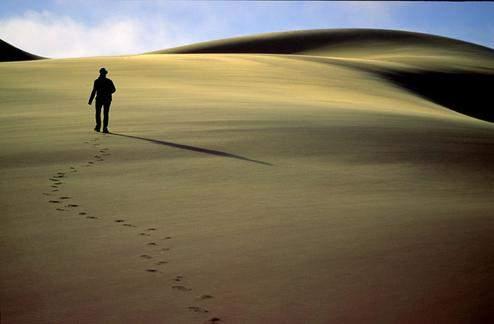 La voz que grita en el desierto